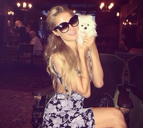 paris_hilton_y_el_pequeno_mr._amazing