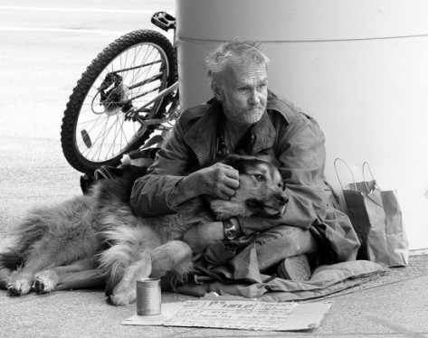 homeless_dogs_and_owners_16__8612
