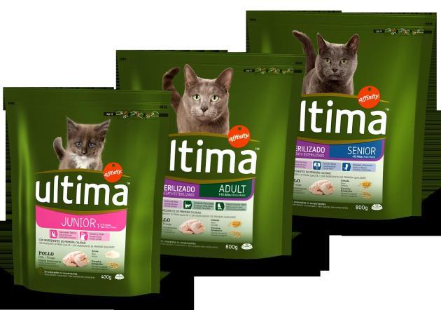 Affinity Ultima gatos